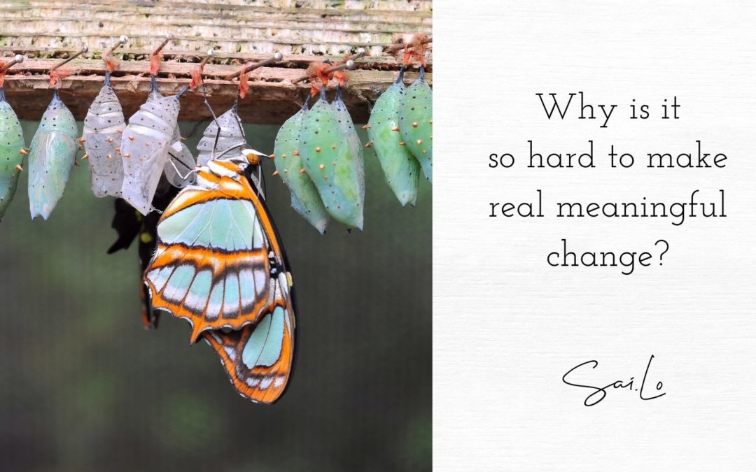 Why is it so hard to make real meaningful change?